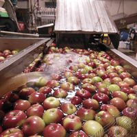 1434126260 apple w water
